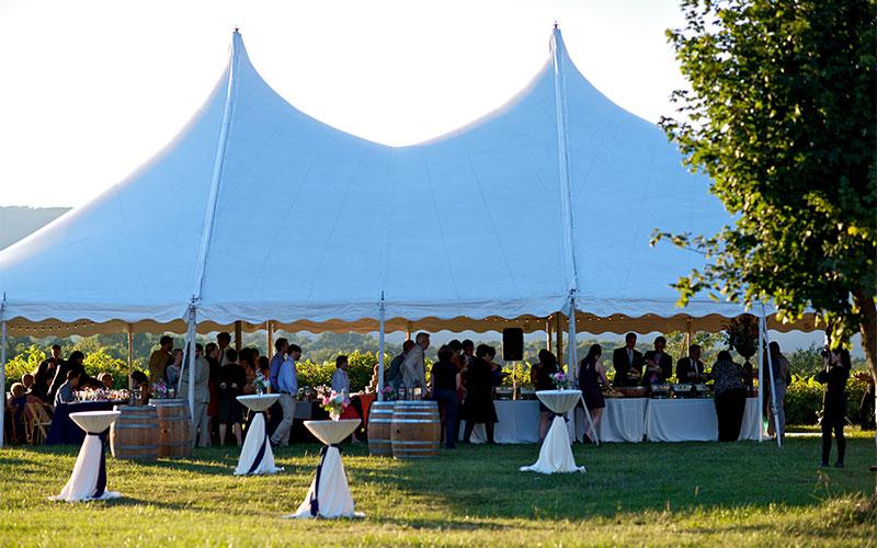 wedding at Cardinal Point